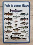 Fische in unseren Flüssen und Seen - Blechschild